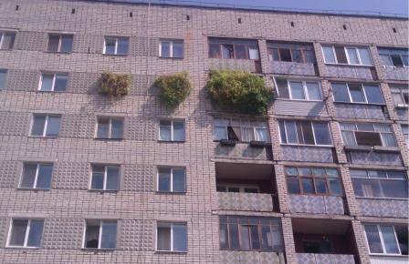 Как распознать проблемную квартиру
