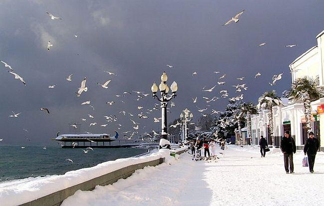 поездка на Новый Год в Крым